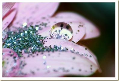 glitterwaterpetal