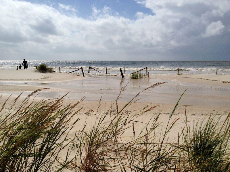 Isaac Beach Surge-vm