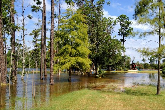 Bayou Rising Ahead of Hurricane Isaac in Gulfport