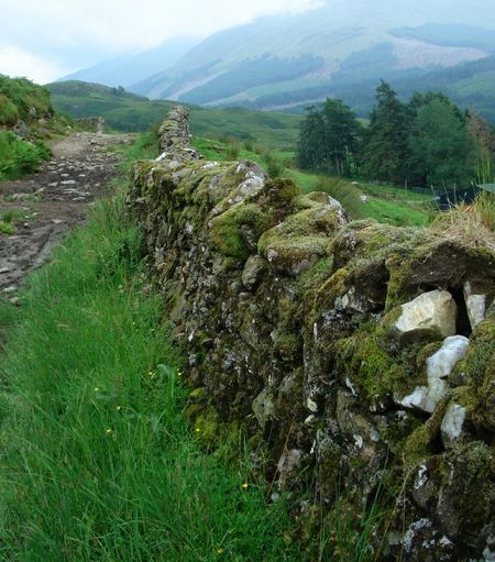 What if a fairy land was on the other side of this old stone wall?