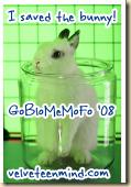 goblomemofo-Isavedthebunny-115x166