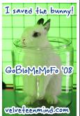 GoBloMeMoFo 2008